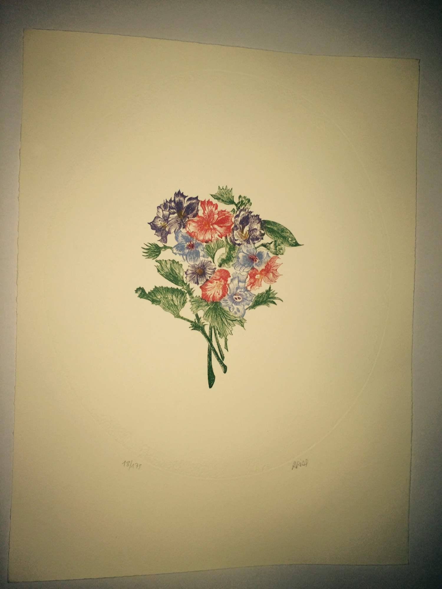 Varias Flores Moradas, Verdes Y Rojas
