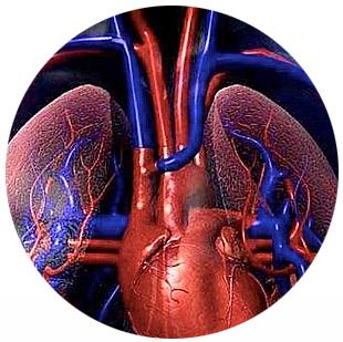 Que es la enfermedad de hipertension pulmonar
